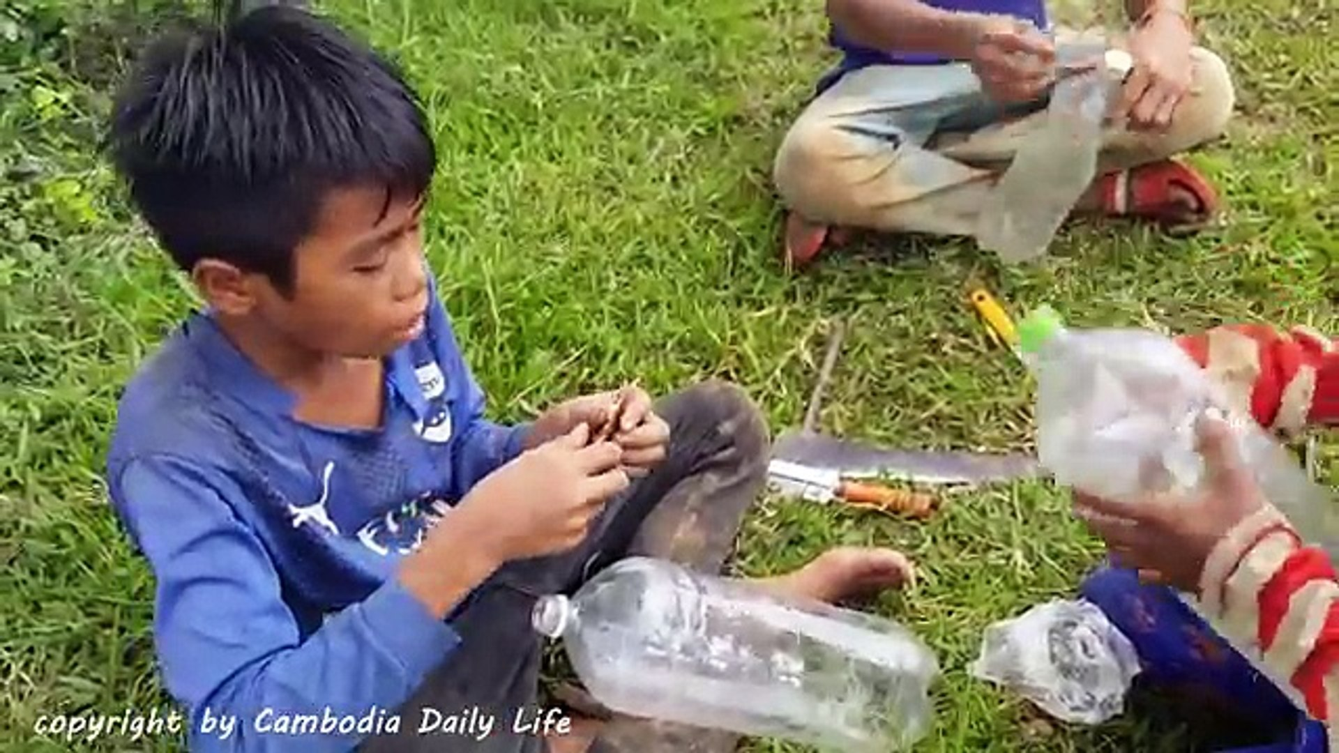 Wow!! Smart Children Catch Tree Snake Using Bottle Trap - How To Catch Tree Snake With Tra