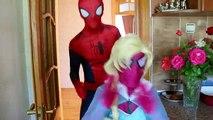 Spiderman vs Joker vs Frozen Elsa - Joker Becomes A Rabbit! w/ Elsa Loses Hair! - Superhero Fun :)