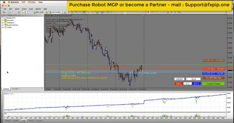 Hedging Forex Robot for EveryDay +2% Profit