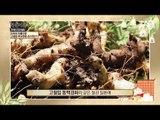 고혈압 후유증! 산속의 단풍으로 관리한다! 가을 '단풍마'로 차려낸 건강밥상!