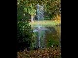 Nantes : le jardin des plantes (montage artistique)