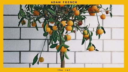 Adam French - The Rat