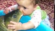 Ce bébé et cette carpe se font un gros bisous... Adorable