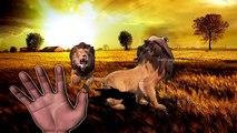 wild animals finger family rhyme | learn wild animals names and sounds | wild cats finger family