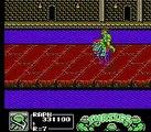 Teenage Mutant Ninja Turtles 3 NES Bosses