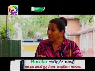 Hara Kotiya 06/11/2017 - 219