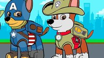 PAW Patrol The New Pup Everest - Dailymotion Video
