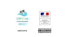 COP23 : 7 gestes pour la planète
