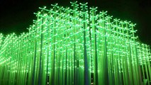 Why There's A Beer Bottle Forest Lighting Up China