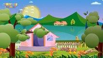 Les animaux - Comptines et chansons pour enfants - Les petits poissons dans l'eau  etc.
