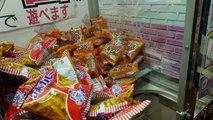 The world's BIGGEST claw machine UFO catcher arcade! Everyday UFO Japan   Crane Couple in Japan Ep 3