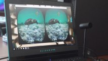 Desarrollan aplicación de realidad virtual concienciar sobre la importancia de océanos
