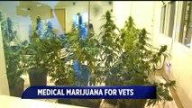 Indiana's American Legion Pushing for Medicinal Marijuana Usage for Veterans