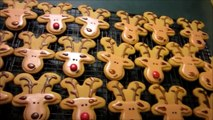 How to make Holiday Reindeer Cookies with royal icing and gingerbread man cookies