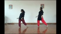 Dola Re Dola - Devdas _ Dynamic Dance Duo