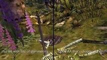 Rosss Game Dungeon: Dungeon Siege