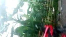 Beautiful indian town ,Beautiful bangladesh HD VIDEO, indian girl fight,indian wow video hd,indian school girl,indian student fun (93)