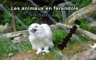 Les animaux en farandole: saison 2: épisode 5