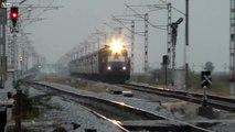 Ecrasé par un train, ce chien provoque des étincelles sur les rails en Russie !