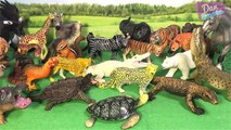 100 WILD ANIMALS TOYS for kids - Learn Animal Names with 3D Puzzle Animal Toys
