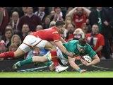 Stander makes powerful 30 metre break! | RBS 6 Nations