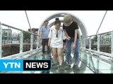 물 위를 걷는 짜릿함...국내 최장 소양강 스카이워크 / YTN (Yes! Top News)