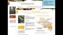 Stratégies de gestion des espèces exotiques envahissantes du bassin Loire-Bretagne