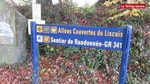 Landes de Liscuis. Le projet du département des Côtes-d'Armor inquiète les propriétaires