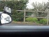 Savoir contrôler ET indiquer avant de changer de direction (permis de conduire étape 1) leçon 5