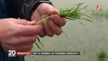 Inondations : faut-il changer les pratiques agricoles ?