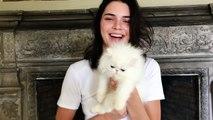 Kendall Jenner Meets the World's Cutest Kitten | Vogue