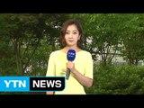 [날씨] 오늘도 푹푹 찐다, 서울 33℃...일부 소나기 / YTN