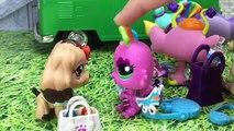 ❥ Minişler: Okul Maceraları Bölüm 9 - Minişler Cupcake Tv - LPS Littlest Pet Shop