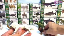 DINOSAURS, SEA ANIMALS & WILD ANIMALS TOY COLLECTION for Kids Takara Tomy Learn Fun Animal Names