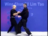 Wing Chun kung fu siu lim tao - form  applications Lessons 9-10