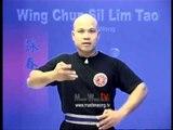 Wing Chun kung fu siu lim tao - form  applications Lessons 6-10