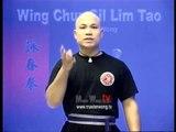 Wing Chun kung fu siu lim tao - form  applications Lessons 8-10