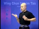 Wing Chun kung fu siu lim tao - form  applications Lessons 3-10