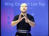 Wing Chun kung fu siu lim tao - form  applications Lessons 10-10