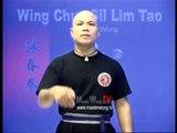 Wing Chun kung fu siu lim tao - form  applications Lessons 7-10