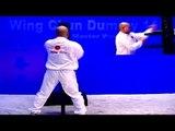 Wing Chun 116 Dummy