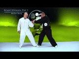Tai Chi combat tai chi chuan fight style use tai chi - lesson 11