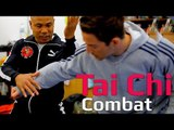 Tai chi combat tai chi chuan - Can you use both chen and yang tai chi in combat? Q7