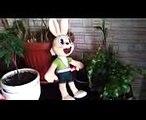 Meet the Rabbit from Nu, Pogodi  Zayats from Nu, Pogodi
