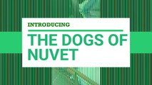 Vitamin Supplement from NuVet Labs for Your Pets