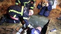 Le sauvetage de l'âne et du cheval à Domfaing
