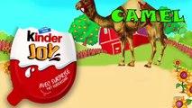 Fat hulk vs Gorilla finger family Rhymes 3D animation - Fat spiderman Finger family Rhymes for Kids