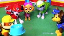 PAW PATROL Nickelodeon Paw Patrol Pups Get Jobs a Frozen Nick Jr Paw Patrol Toy YouTube Video Parody