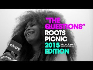 Roots Picnic Interviews (The Questions) 2015
