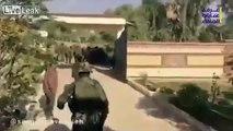 WATCH: ASSAD'S IRANIAN MASTER (GEN. SOLEMANI) TAKES A STROLL IN DEIR AL ZOOR. IRANIAN HORDE FAWNS.